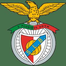Футболки, майки и другая одежда футбольного клуба Бенфика