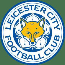 Футболки, майки и другая одежда футбольного клуба Лестер Сити