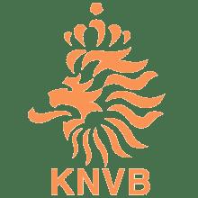 Футболки, майки и другая одежда футбольного клуба Сборная Голландии