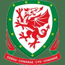Футболки, майки и другая одежда футбольного клуба Сборная Уэльса