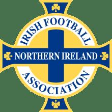 Футболки, майки и другая одежда футбольного клуба Северная Ирландия